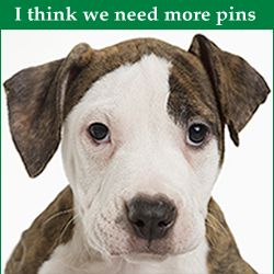 Hmm ...Need Pins? Better call Pin Finder